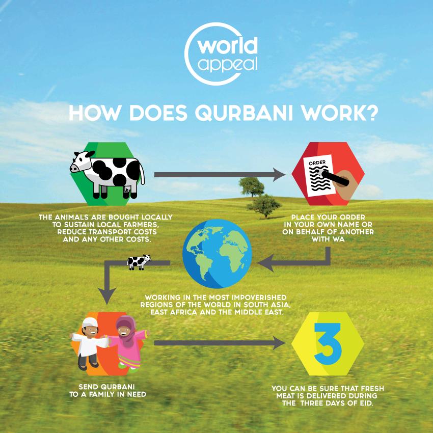Qurbani - The Process